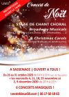 Concert de noël - Broadway Musicals & Christmas Carols