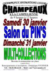 Salon du Pin's